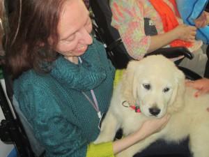 'Uri', la perra terapeuta