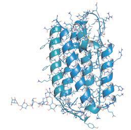 molecula_interferonbeta